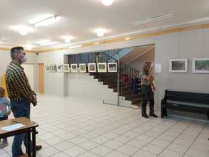 Galeria ZWIERZĘTA WOKÓŁ NAS - galeria